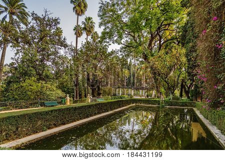 pond in garden in Alcazar of Seville Spain