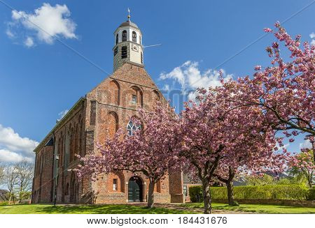 Cherry blossom in front of the old church in Ten Boer Holland