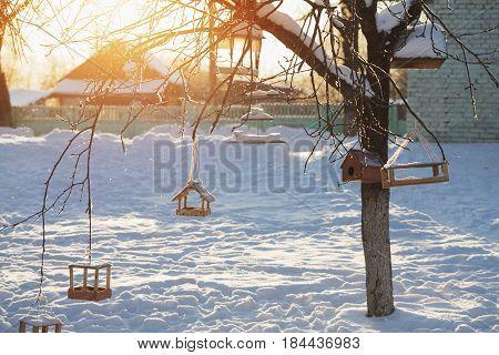 the bird feeders at sunrise in winter garden