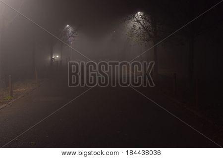 Avenue in the fog - Brescia - Italy