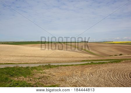 Cultivated Fields With Scenery