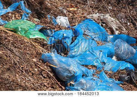 Blue Torn Complete Garbage Bags With Dry Leaves And Other Garbage Lie Together On The Street, Outdoo