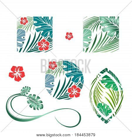 Tropic Palm Leaves and Flower Design Collection