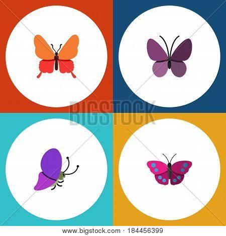 Flat Butterfly Set Of Summer Insect, Danaus Plexippus, Violet Wing And Other Vector Objects. Also Includes Butterfly, Monarch, Archippus Elements.