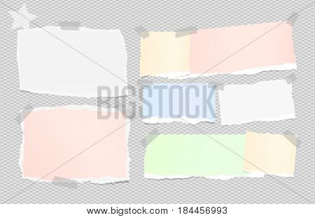 Ripped white, colorful note, notebook, copybook paper sheets stuck with sticky tape on squared gray background and star on corner.