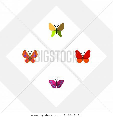 Flat Moth Set Of Moth, Beauty Fly, Archippus And Other Vector Objects. Also Includes Monarch, Milkweed, Archippus Elements.
