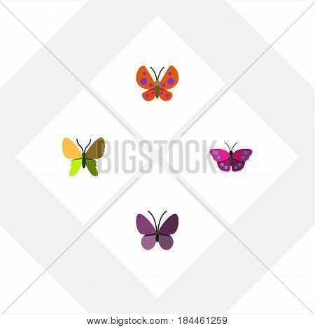 Flat Butterfly Set Of Beauty Fly, Violet Wing, Archippus And Other Vector Objects. Also Includes Moth, Butterfly, Monarch Elements.