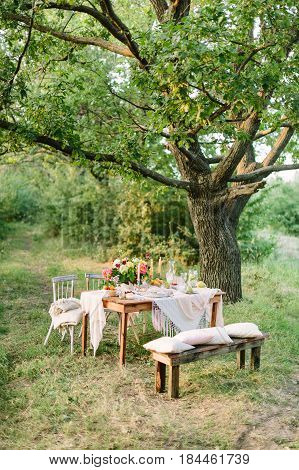 picnic, summer, holiday concept - festive table setting under big oak tree in forest, openwork white tablecloth, wooden bench and chairs, colorful bouquet, candlesticks, fruits, lemonade