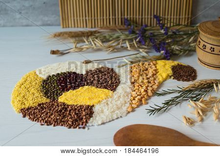 Rice, buckwheat grain, corn, pea, semolina and lentil on a white wooden background in form of horn of plenty. Wooden solt shakie. Bunches of dried wheat ears, oats and poppy seeds. Wooden spoon.