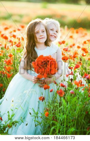 little girl, poppies, fashion concept - two young girlfriends on a walk through summer field of poppy in elegant dresses, holding a bouquet of poppies, cute princess hugging on summer background
