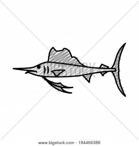 swordfish icon over white background. vector illustration