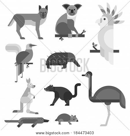 Australia wild animals cartoon popular nature characters flat style black white and australian mammal aussie native forest collection vector illustration. Natural little young portrait.