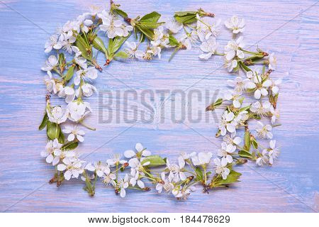Frame of Spring Flowers on the background of an old vintage blue board