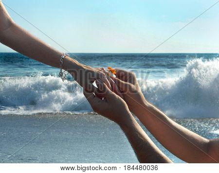 Propuesta de matrimonio en una playa en pleno verano
