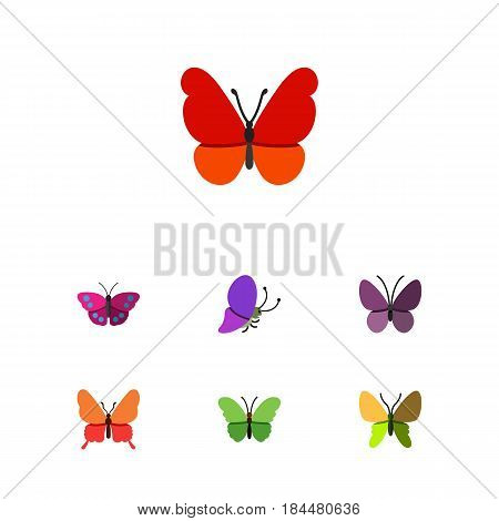 Flat Monarch Set Of Beauty Fly, Archippus, Violet Wing And Other Vector Objects. Also Includes Milkweed, Summer, Butterfly Elements.