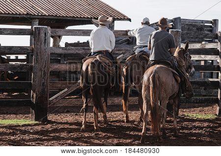 Three Cowboys Mounted On Horses On A Farm Corral
