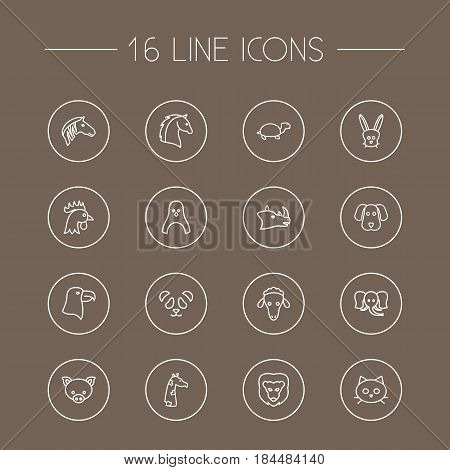 Set Of 16 Alive Outline Icons Set.Collection Of Pig, Rhino, Rabbit And Other Elements.