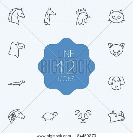 Set Of 12 Beast Outline Icons Set.Collection Of Rhino, Lizard, Horse And Other Elements.