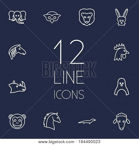 Set Of 12 Brute Outline Icons Set.Collection Of Rabbit, Lion, Rhino And Other Elements.