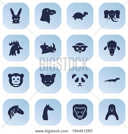 Set Of 16 Alive Icons Set.Collection Of Ape, Trunked Animal, Gecko And Other Elements.