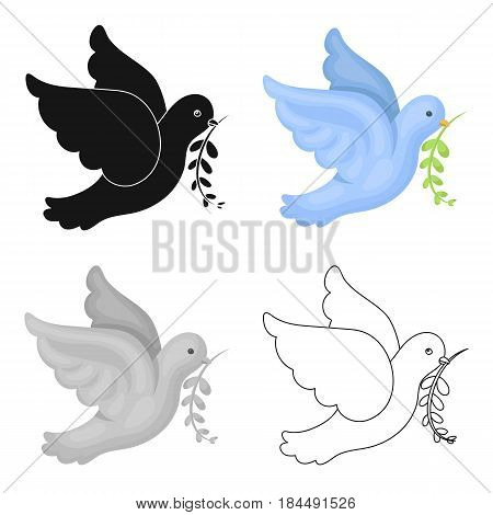 Pigeon of the World with a twig in its beak.Hippy single icon in cartoon style vector symbol stock illustration .