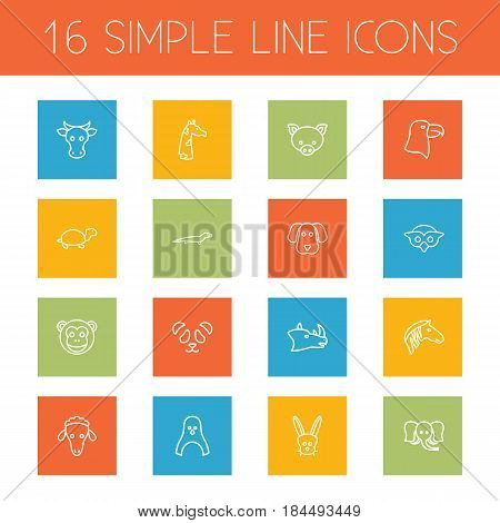 Set Of 16 Brute Outline Icons Set.Collection Of Cow, Rabbit, Mammal And Other Elements.