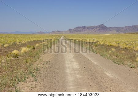 A lonely desert road in the middle of nowhere and nothing turned out to have beauty of its own style.