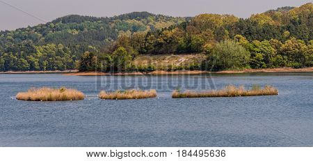 Landscape of evergreen trees on shoreline Landscape of lake with three small islands in the middle of lake and shoreline with a small clearing surrounded by evergreen trees.