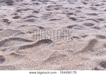 Foot Stamp On Beach