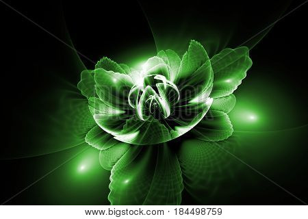 Abstract Exotic Flower With Textured Petals On Black Background. Fantasy Fractal Design In Green Col