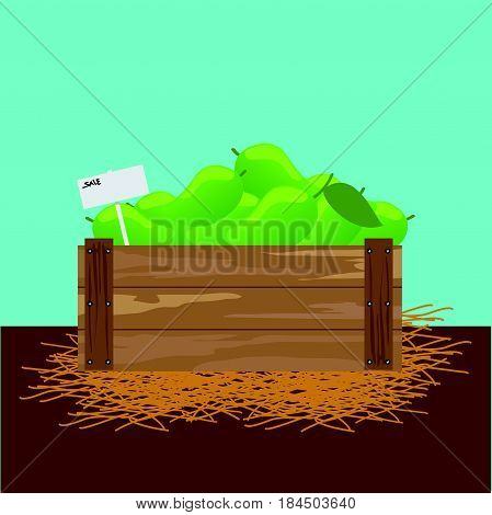 mango in a wooden crate Vector illustration