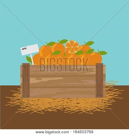 Orange in a wooden crate illustration.