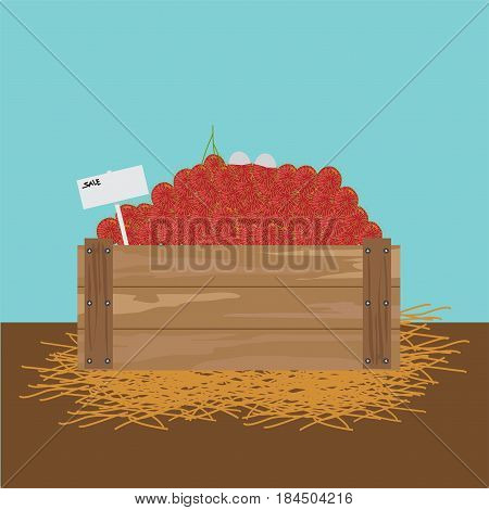 Rambutan in a wooden crate illustration