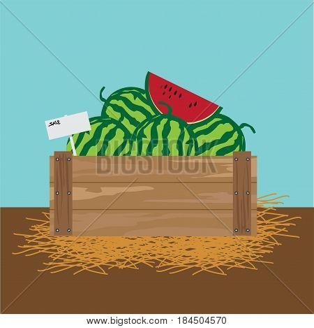 watermelon in a wooden crate illustration.