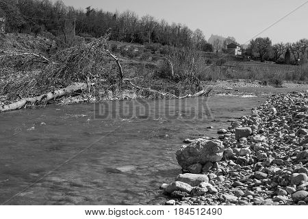 Channel of dried up river and fallen trees.