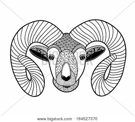 Zentangle head of mountain ram for coloring. Vector doodled illustration.