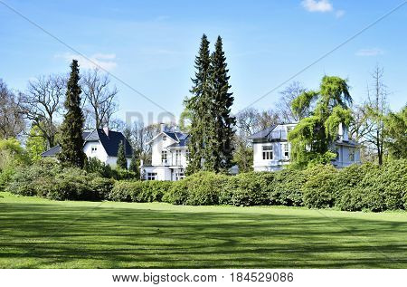 Luxury homes or houses at a park, with green meadow, blue sky with fluffy clouds and trees. Building exterior, real estate scene of a rich neighborhood.