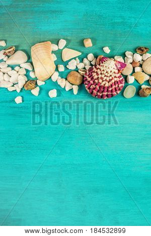 An overhead photo of sea shells and pebbles on a vibrant turquoise background texture with plenty of copy space