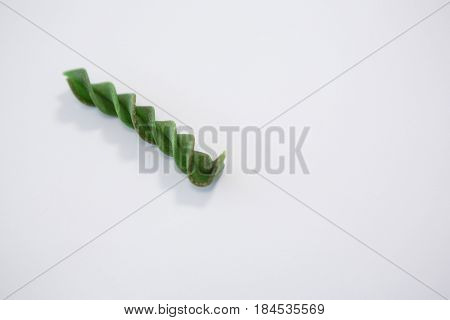 Green rotini isolated on white background