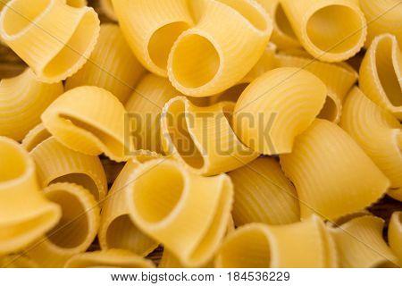 Close-up of lumache rigate pasta