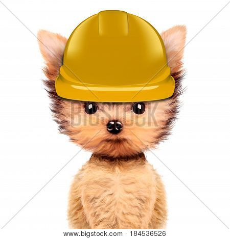 Funny dog in yellow hard hat Isolated on white background. Concepts for web banners, web sites. Fixing computer and repair center concept with cute dog. 3D illustration with clipping path