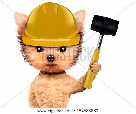 Funny dog in hard hat with hammer isolated on white background. Concepts for web banners, web sites. Fixing computer and repair center concept with cute dog. 3D illustration with clipping path