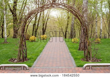 Garden with topiary landscape and arch. Landscaping in the park.