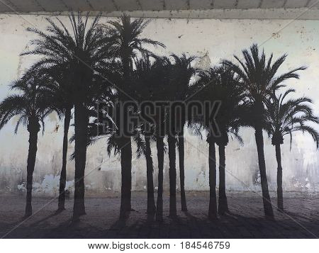 Photomontage of a weathered wall with palm trees on the beach.