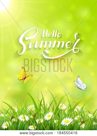 Sunny day and lettering Hello Summer on green background, butterflies flying above the grass and flowers, illustration.
