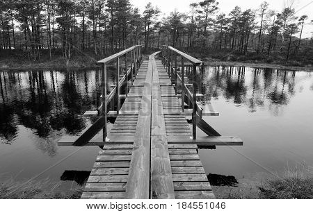 Nature hiking trail over the bog black and white