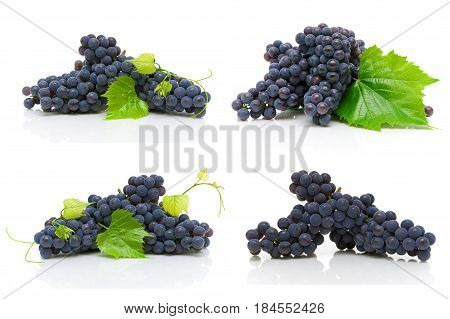 bunch of ripe dark grapes isolated on white background. Horizontal photo.