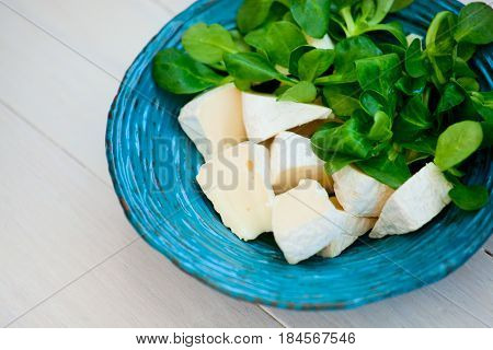 Cheese with fresh herbs on the plate