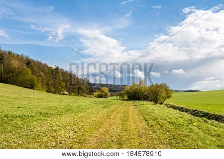 Spring Countryside With Green Meadows