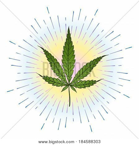Marijuana green leaf with bright colorful rays of light over white background. Cannabis vector illustration
